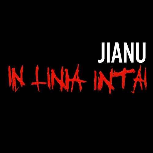 In Linia Intai de Jianu