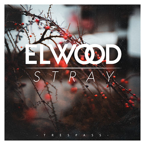 Trespass von Elwood Stray