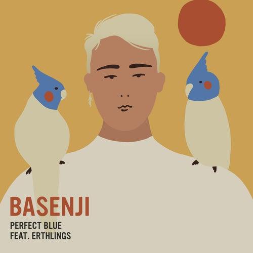 Perfect Blue von Basenji