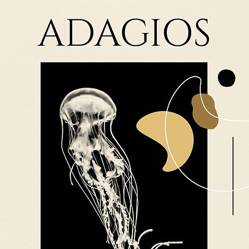Adagios de Various Artists