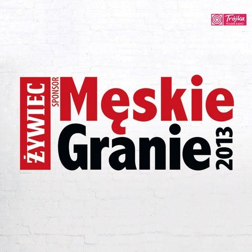 Męskie Granie 2013 de Various Artists