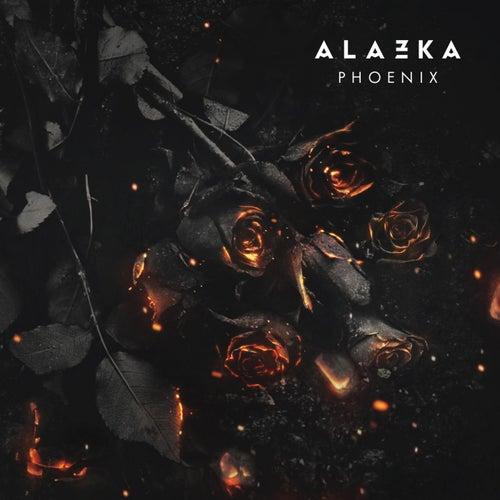 Phoenix fra Alazka