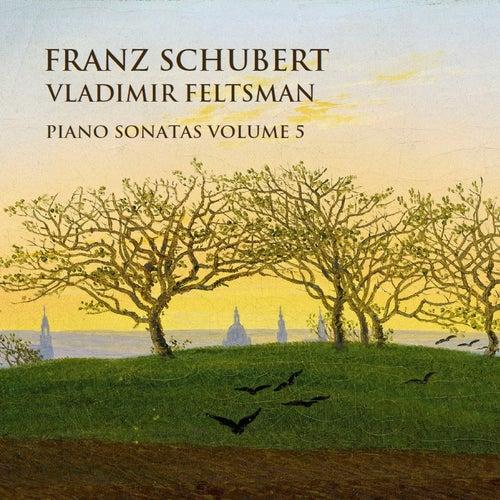 Schubert: Piano Sonatas Vol. 5 von Vladimir Feltsman