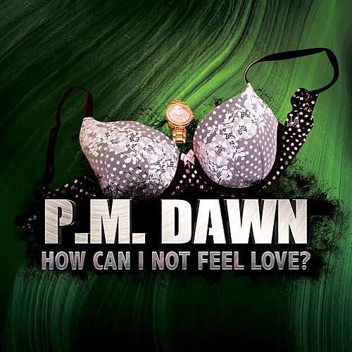 How Can I Not Feel Love? by P.M. Dawn