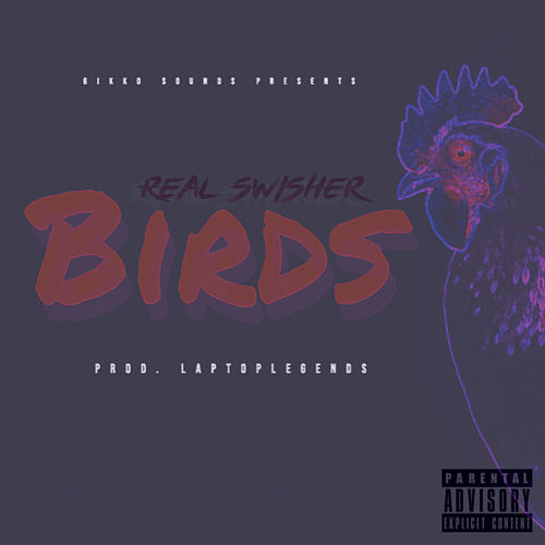 Birds by Real Swisher
