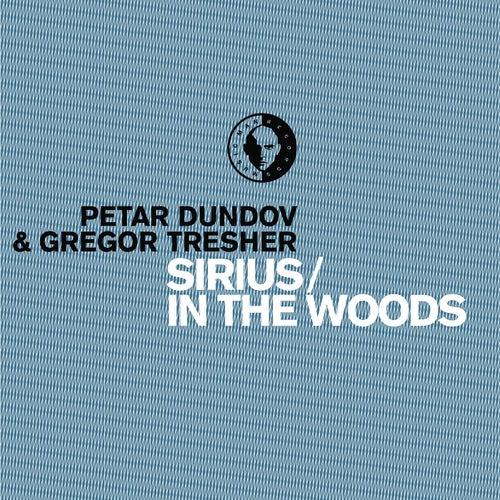 Sirius / In The Woods de Petar Dundov
