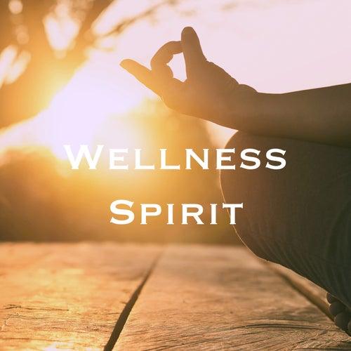 Wellness Spirit by Various Artists