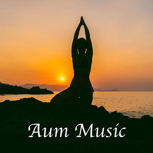 Aum Music by Various Artists