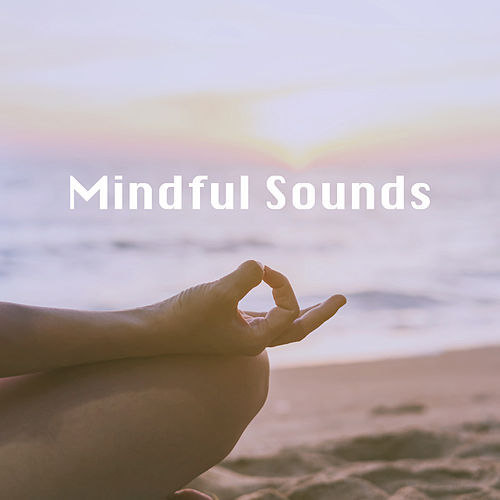 Mindful Sounds by Various Artists