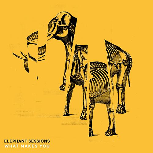 What Makes You de The Elephant Sessions