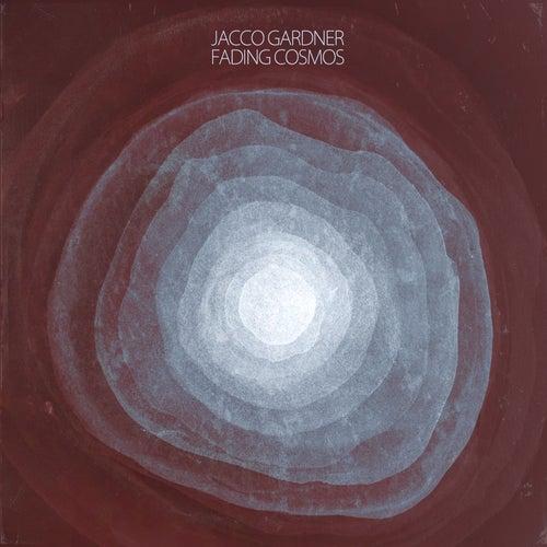 Fading Cosmos by Jacco Gardner