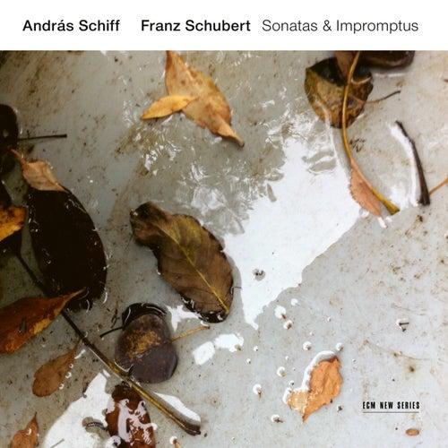 Franz Schubert: Sonatas & Impromptus by András Schiff