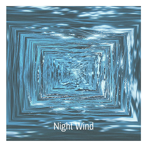 Night Wind by Various Artists