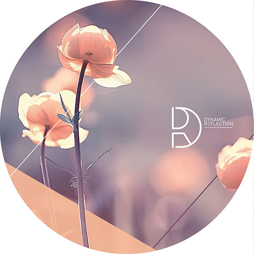 Kamaji EP by Wrong Assessment