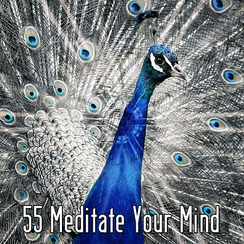 55 Meditate Your Mind by Lullabies for Deep Meditation
