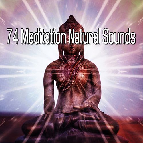 74 Meditation Natural Sounds de Nature Sounds Artists