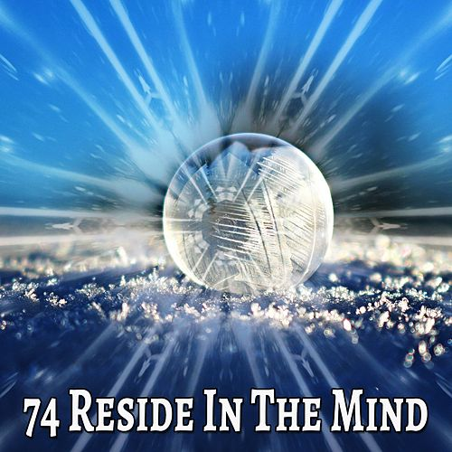74 Reside in the Mind de Meditación Música Ambiente