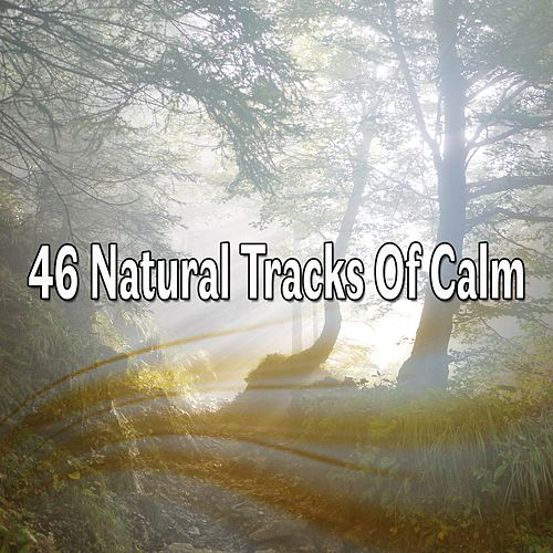 46 Natural Tracks of Calm de Massage Tribe