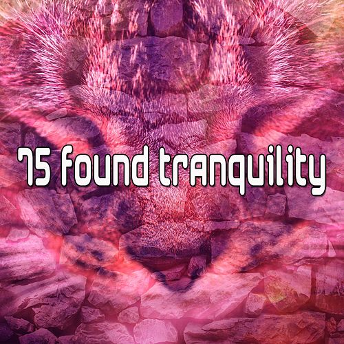 75 Found Tranquility by S.P.A