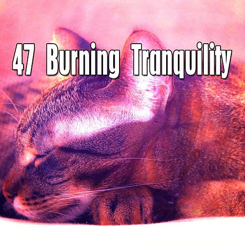 47 Burning Tranquility de Various Artists