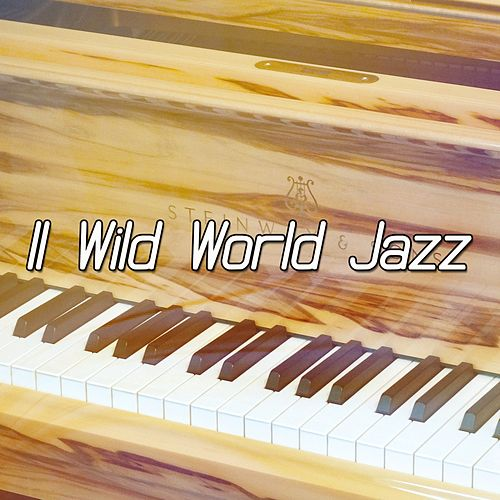11 Wild World Jazz de Bossanova