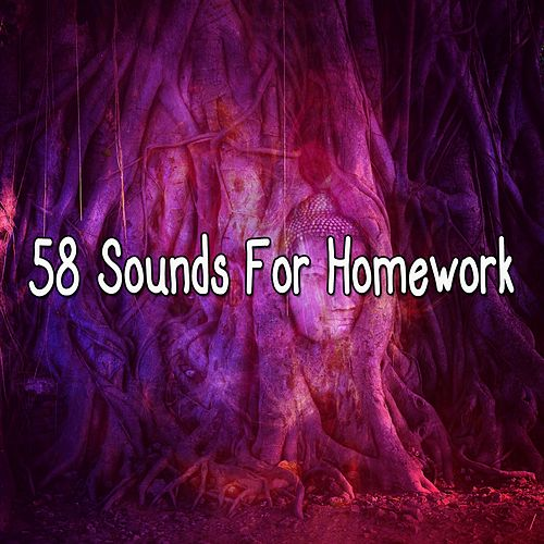 58 Sounds for Homework de Zen Meditate