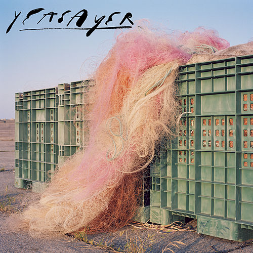 Fluttering In The Floodlights von Yeasayer