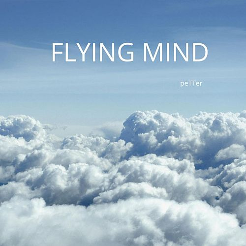 Flying Mind by Petter