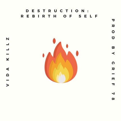 Destruction: Rebirth of Self by Vida Killz