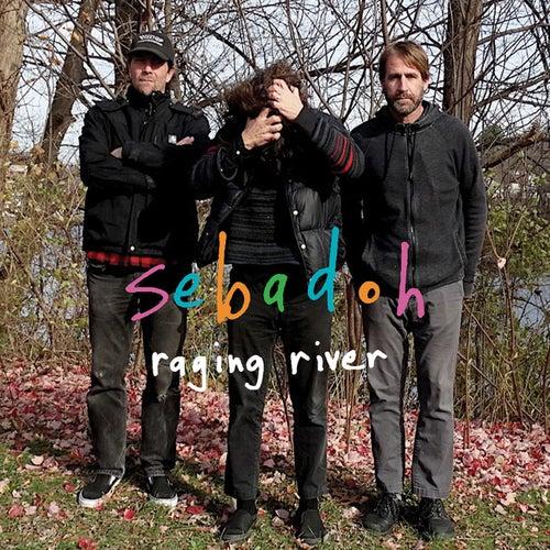 Raging River by Sebadoh
