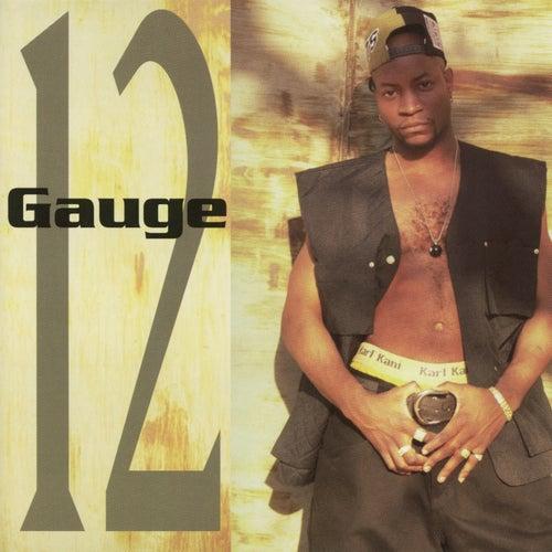 12 Gauge de 12 Gauge