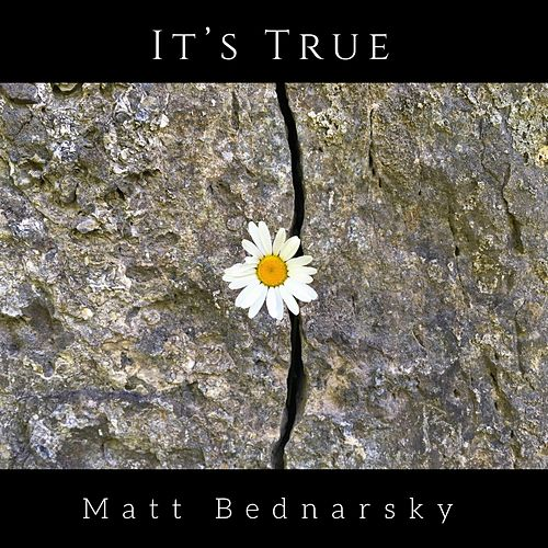 It's True by Matt Bednarsky