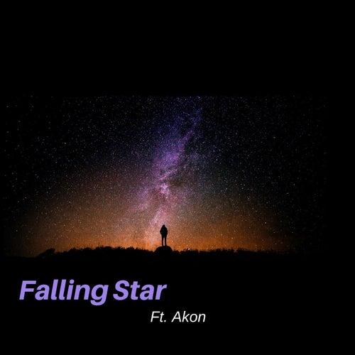 Falling Star de Leeson Bryce