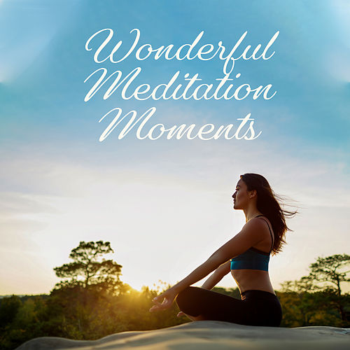 Wonderful Meditation Moments: 2019 Deep Ambient New Age Music for Pure Yoga & Relaxation, Inner Energy Increase, Chakra Healing Sounds von Yoga Music