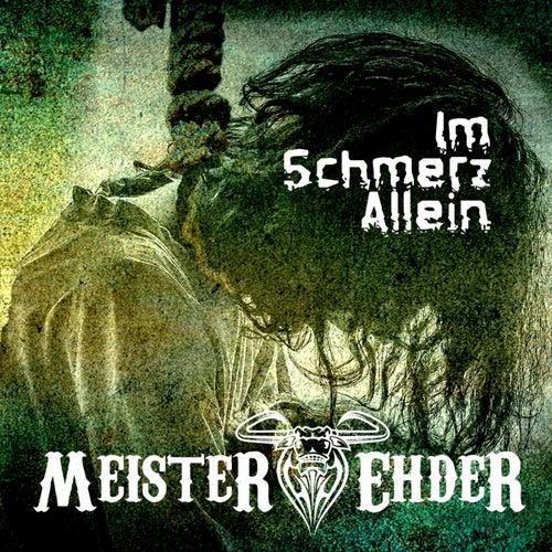 Im Schmerz allein von Meister Ehder