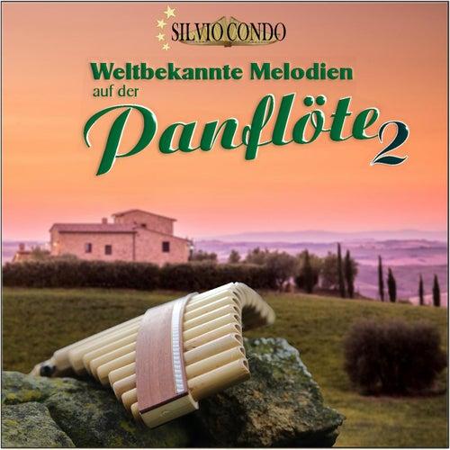 Weltbekannte Melodien auf der Panflöte 2 de Silvio Condo