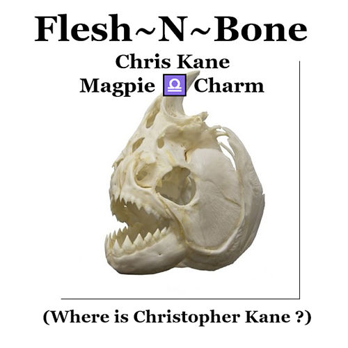 Flesh-N-Bone by Chris Kane
