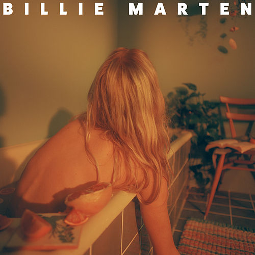 Feeding Seahorses by Hand by Billie Marten