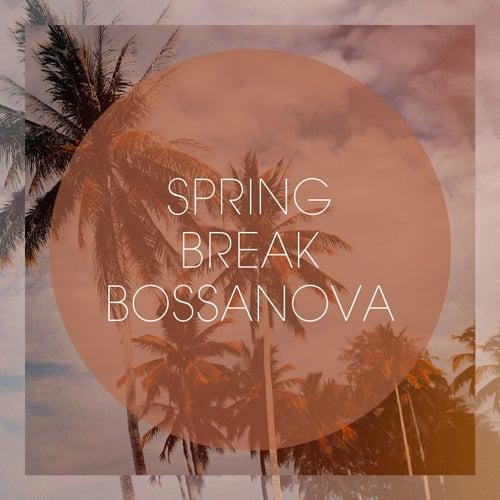 Spring Break Bossanova von Various Artists