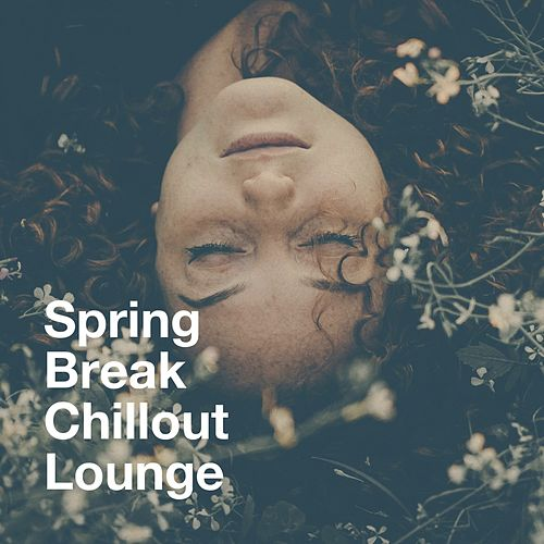 Spring Break Chillout Lounge von Various Artists