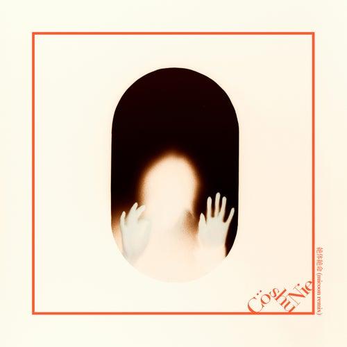 Zettai Zetsumei (Micoon Remix) von Cö Shu Nie