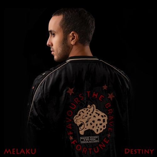 Destiny by Melaku