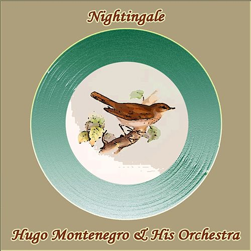 Nightingale by Hugo Montenegro