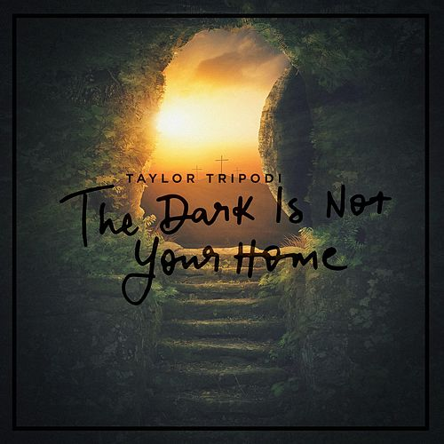 The Dark Is Not Your Home by Taylor Tripodi
