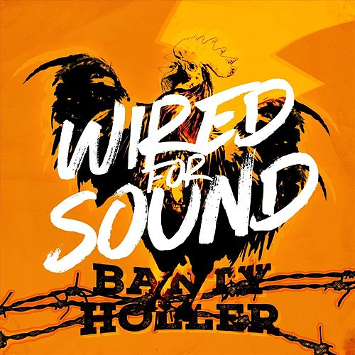 Wired for Sound by Banty Holler