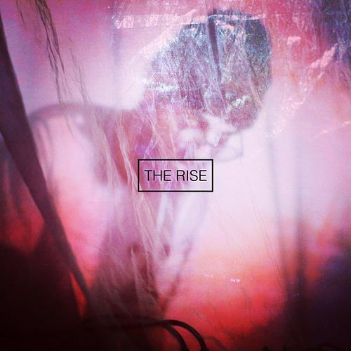 The Rise by Brainorchestra