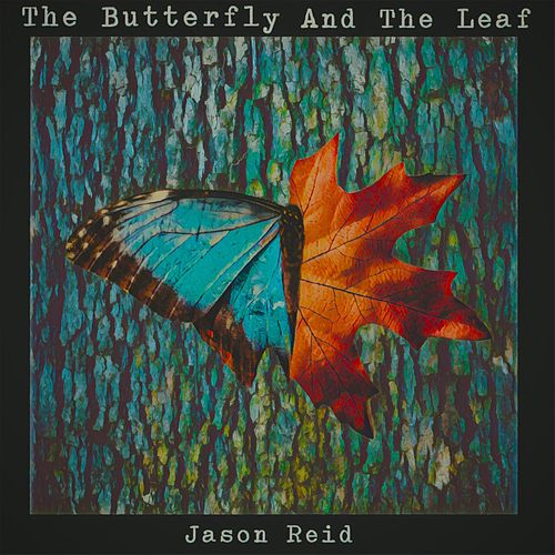 The Butterfly and the Leaf by Jason Reid