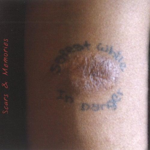 Scars & Memories de MF Grimm