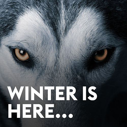 Winter Is Here by Various Artists