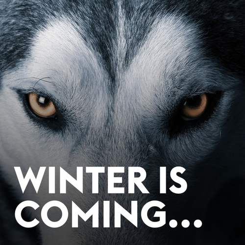Winter Is Coming von Various Artists